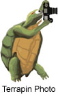 Terrapin Photo Logo